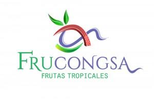Logo-frucongsa